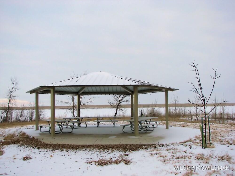 Gazebo In The Winter Time! by WILDBRIMOWILDMAN