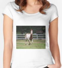 Running horse. Women's Fitted Scoop T-Shirt
