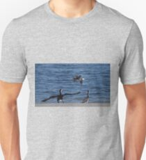 Cormorants At Safety Bay Unisex T-Shirt