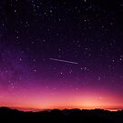 Shooting For The Stars by Neli Dimitrova