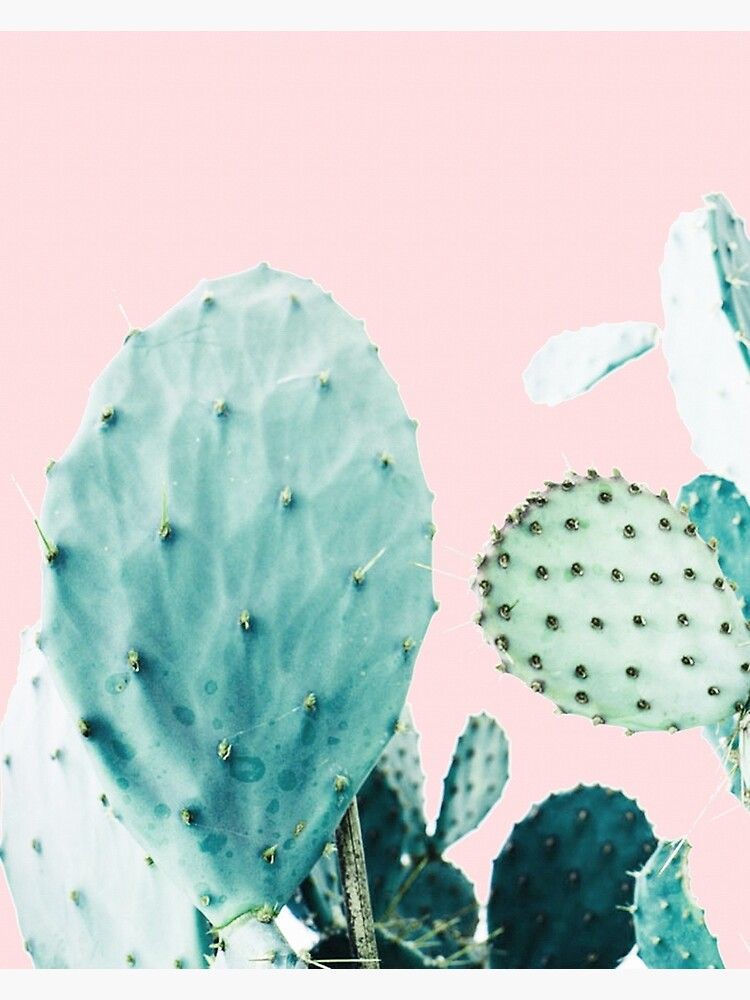 Cacti, Cactus, Cacti print, Cactus art, Desert, Nature, plant, Minimalist, Modern by juliaemelian