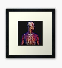 Body Human Framed Print