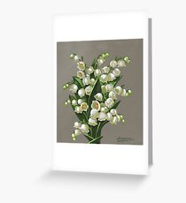 Lilies of the valley - acrylic painting Greeting Card