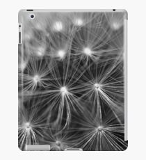 feather iPad Case/Skin