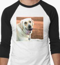 Labrador Dog Men's Baseball ¾ T-Shirt