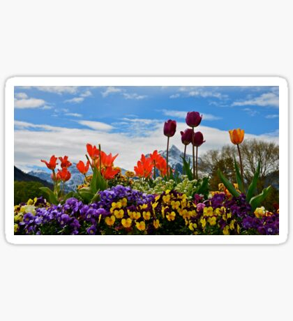 Rautispitz mountain with a spring foreground Sticker
