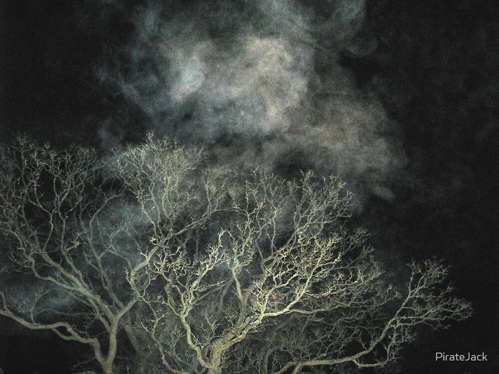 tree.. smoke.. i dunno.. by PirateJack