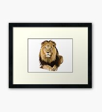 LION KING Framed Print