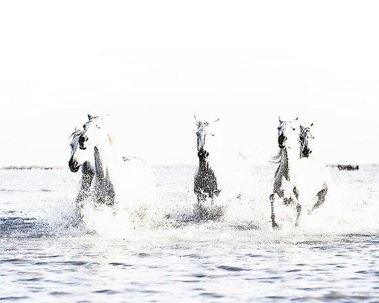 Wilde Pferde, weiße Pferde, Pferd drucken, Pferd Kunst, Wandkunst, Wanddekoration, Trendy print, Animal print, Interior von juliaemelian