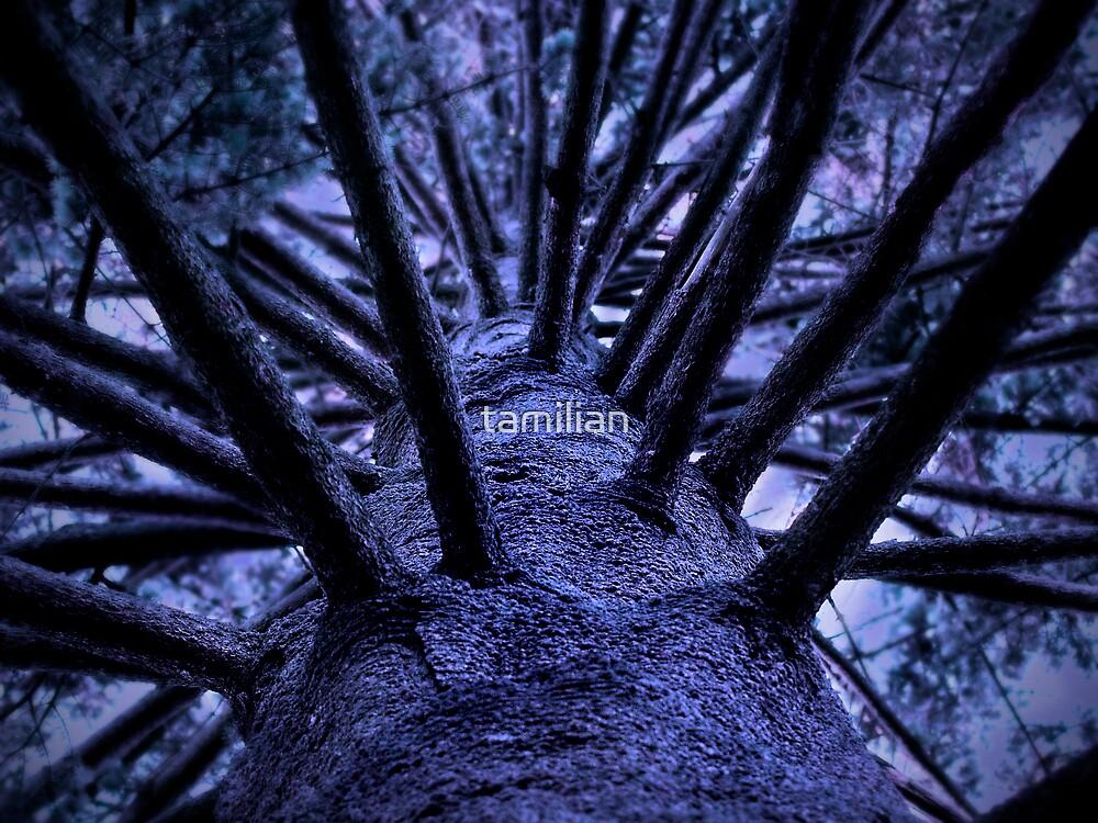 Weird tree by tamilian