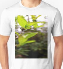 Green Leaf in the Sun Unisex T-Shirt