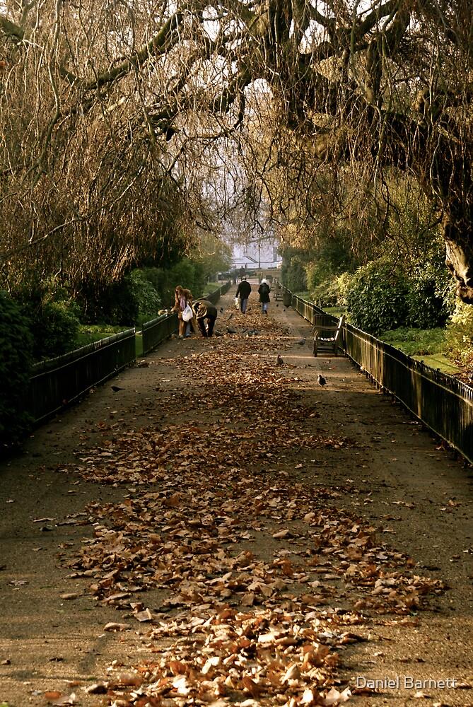 Hyde Park by Daniel Barnett