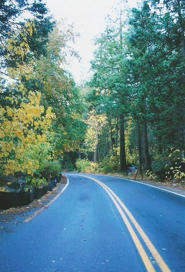 Driving in Yosemite during the fall by becky0726