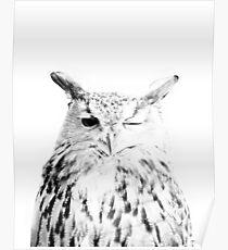 Eulen-Print, Vogel Print, Skandinavisch, Nordic, Marmor, Trendy Print, Stil, skandinavische Kunst, moderne Kunst, Wandkunst, Print, minimalistisch, Modern Poster