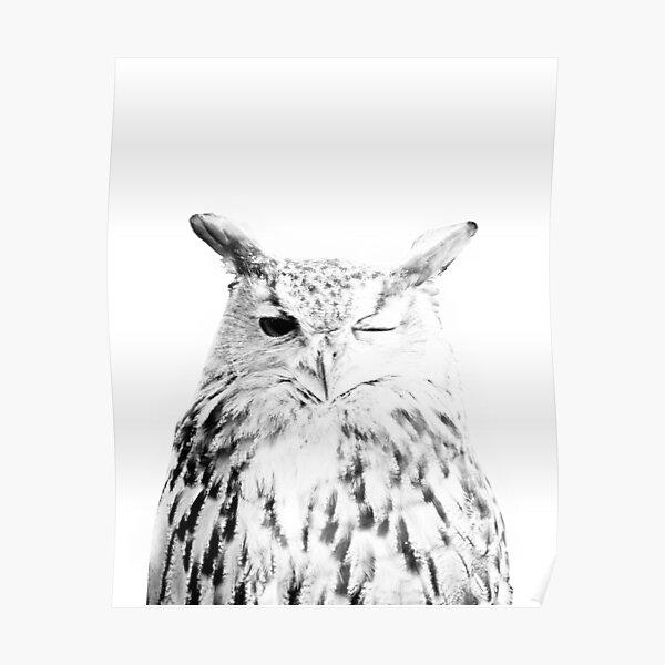 Owl print, Bird print, Scandinavian, Nordic, Marble, Trendy print, Styled, Scandinavian art, Modern art, Wall art, Print, Minimalistic, Modern Poster