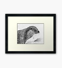 Eurasian Otter in a Snowstorm Framed Print