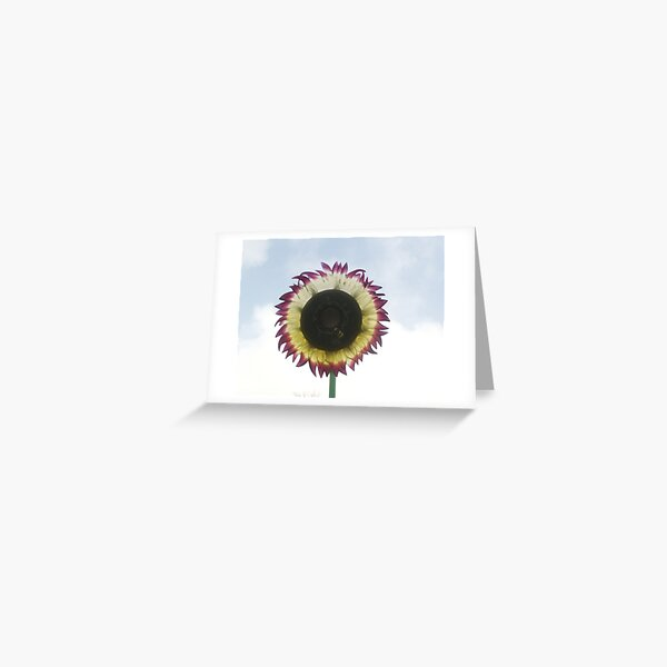 The Adventures of the Wild Flower Greeting Card