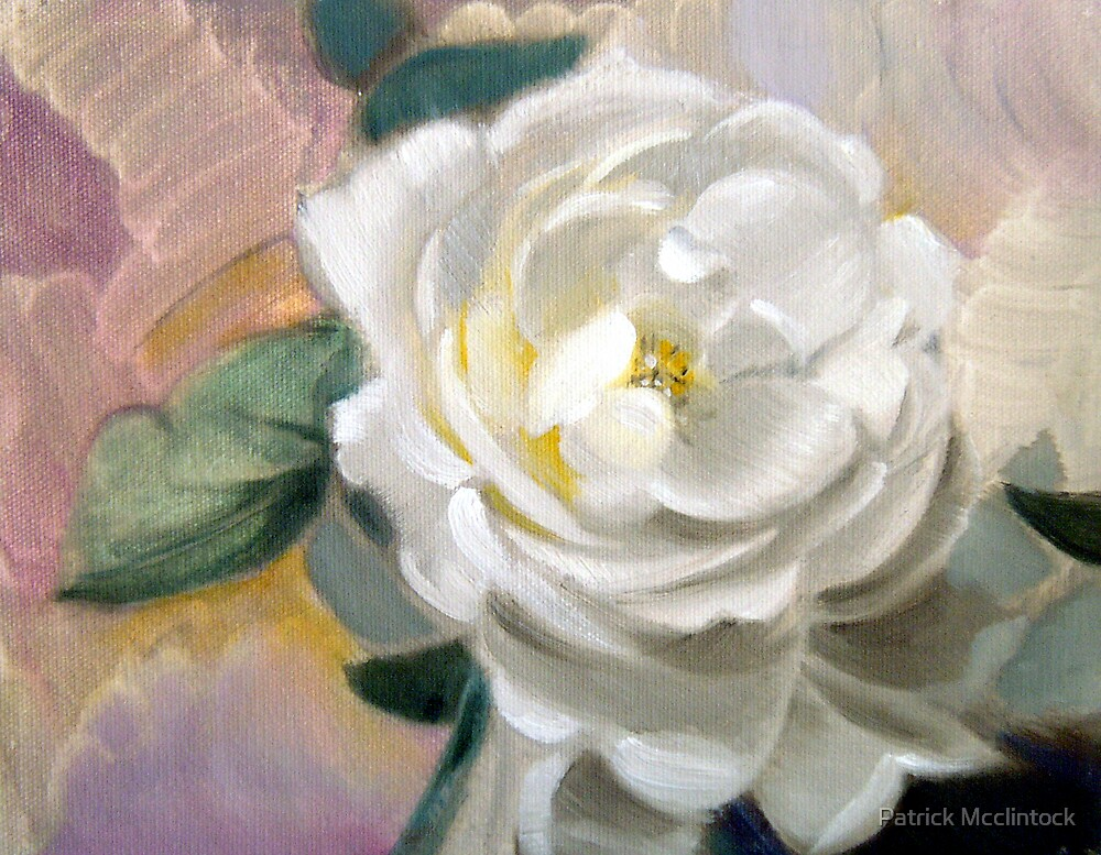 White Rose by Patrick Mcclintock