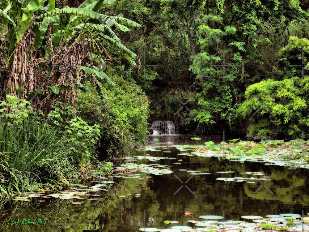 Cascade in the Pond by photorolandi