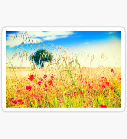 Poppies and tree in the distance Sticker