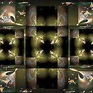 Geometric 3 by Dana Roper