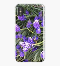 Lupin flowers iPhone Case/Skin