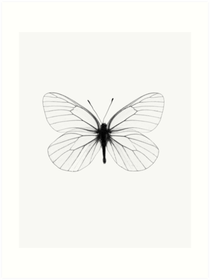 Butterfly print insect print scandinavian print scandinavian trendy print styled