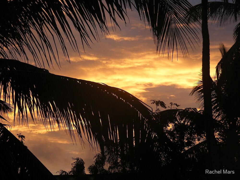Sunrise by Rachel Mars