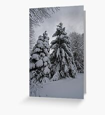 Nor Easter Greeting Card