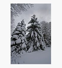 Nor Easter Photographic Print