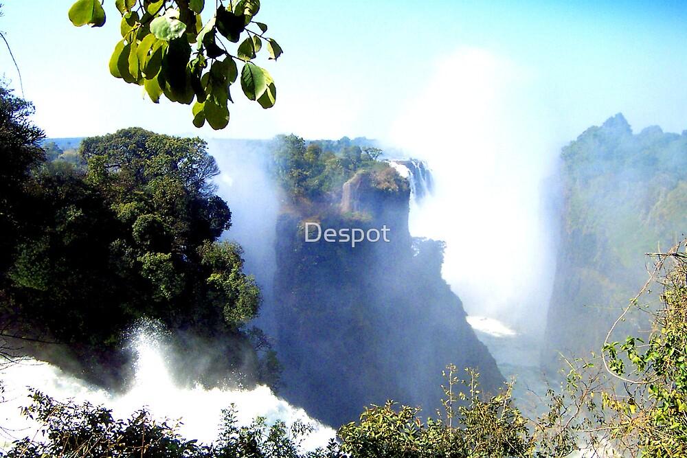 Vic Falls by Despot