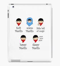 Soft Merlin, Warm Merlin... iPad Case/Skin