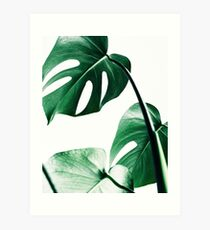Monstera leaves,Tropical leaves, Green leaves, Leaf, Modern art, Wall art, Print, Minimalistic, Modern, Scandinavian print Art Print