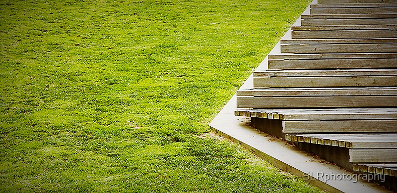 Grassy Steps by SLRphotography