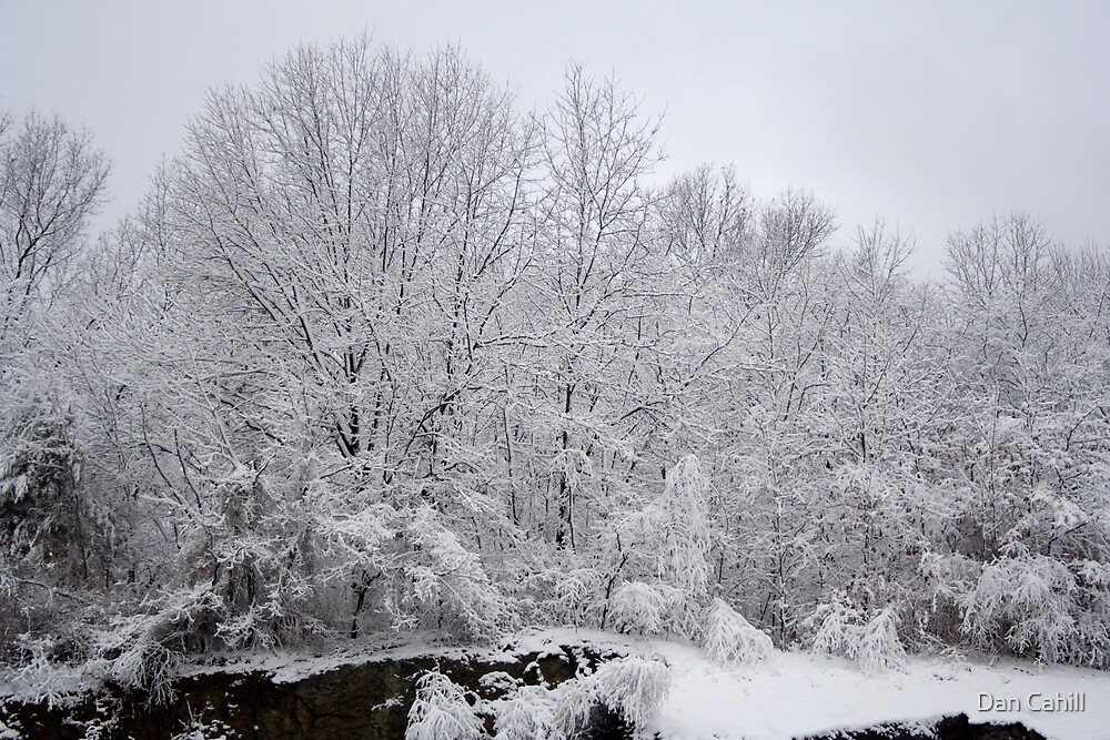 Recent Snow Serie: Snowfall V by Dan Cahill