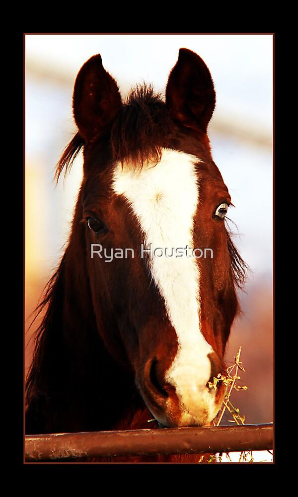 Glass Eye by Ryan Houston
