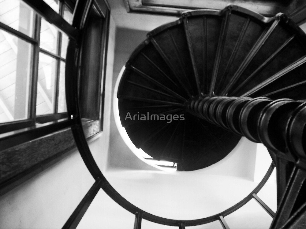 Ascend by AriaImages