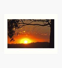 Cootamundra Sunset Art Print