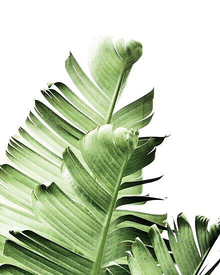 Bananenblätter, tropische Blätter, grüne Blätter, Blatt, moderne Kunst, Wandkunst, Druck, minimalistisch, modern, skandinavischen Druck von juliaemelian