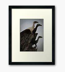 Eoraptor Family Framed Print