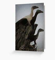 Eoraptor Family Greeting Card