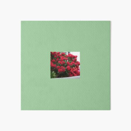 Rhododendron Art Board Print