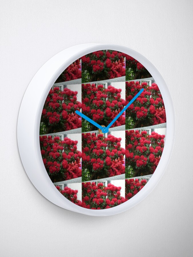 Alternate view of Rhododendron Clock