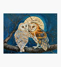 Barn Owls under full moon Photographic Print
