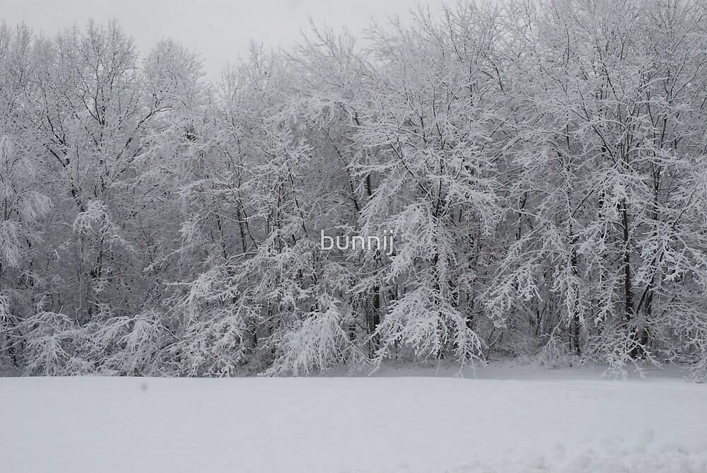 Fresh Snow Series I by bunnij