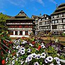 Strasbourg in bloom by mamba