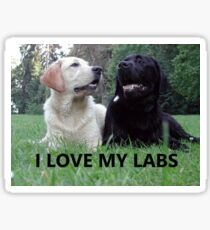 labrador retriever i love my labs picture Sticker