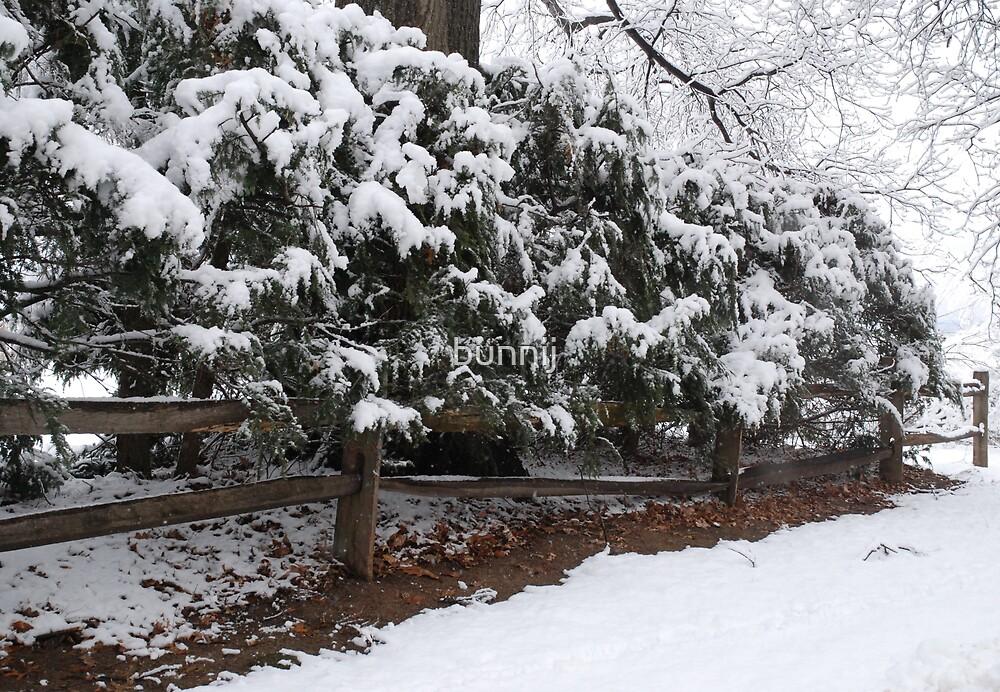 Fresh Snow Series VIII by bunnij
