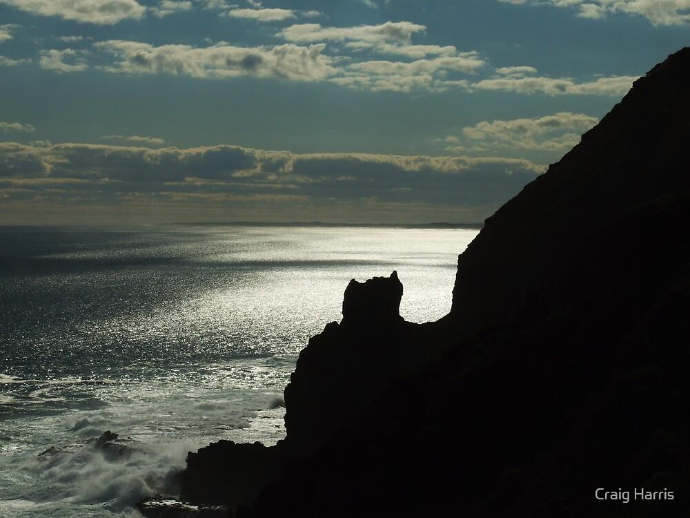 Bat Rock by Craig Harris