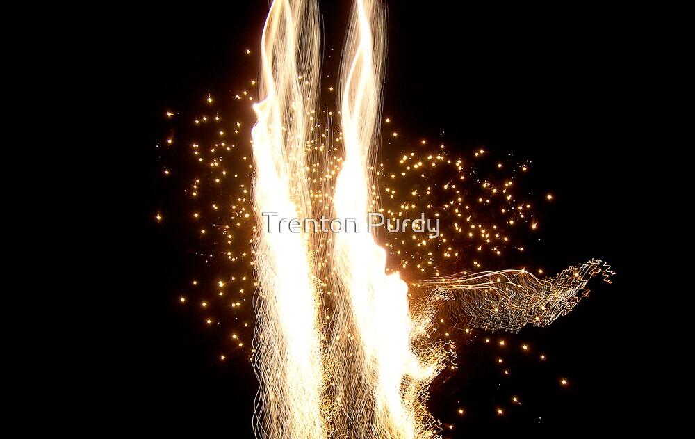 Dancing Fireworks by Trenton Purdy